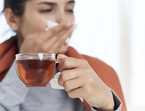 Plantas medicinales para la gripe