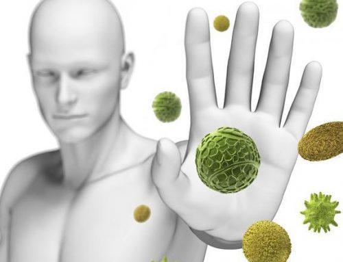 Complementos alimenticios para subir el sistema inmune y aumentar tu energía:
